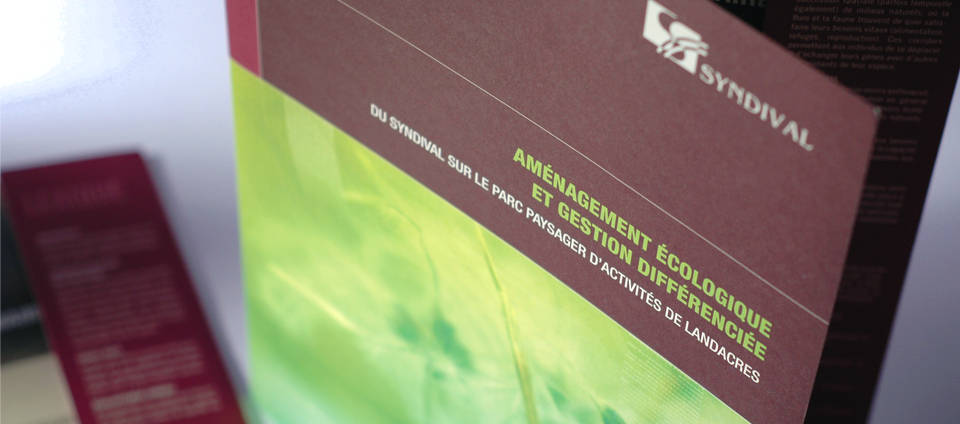Plaquette de présentation Syndival
