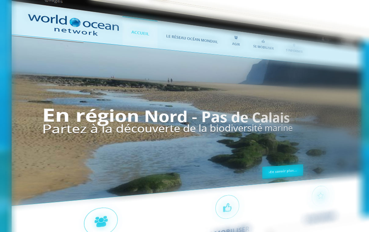 World Ocean Network Création du site web