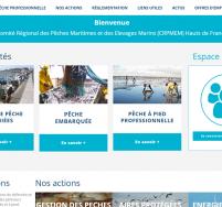 Création de site web Boulogne sur Mer, Calais Comité des pêches des Hauts de France