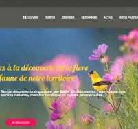 Création de site web Boulogne sur Mer, Calais, Pays d'Opale