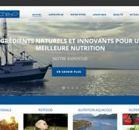 Création de site web Boulogne sur Mer, Calais Sopropêche